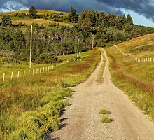 Country Road by Jim Sauchyn