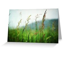 In the Meadow - JUSTART © Greeting Card