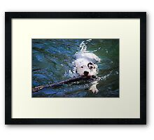 """Retrieval"" Framed Print"