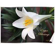 The Easter Lily ~ a Biblical Flower Poster