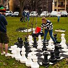 Chess in the park by indiafrank