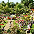 Shrewsbury Garden UK by AnnDixon