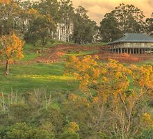 Autumn on the Hill, Bridgetown, WA by Elaine Teague