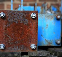 rusty-blue 3 by Astrid Driesen
