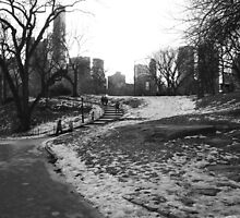Black White NY Central Park Nr 1 by silvianeto