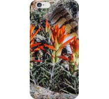 The Feather iPhone Case/Skin