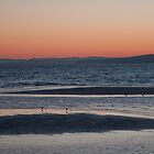 Rosebud Sunrise by WayneG57