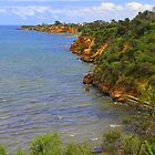 Beaumaris Bay above Mentone Beach - Victoria  -  Australia by bayside2