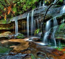 Somersby Falls side creek, Central Coast, New South Wales by Erik Schlogl