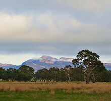 The Grampians National Park by andrewshunt