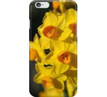 Dresses in Happy Yellow - Jonquils iPhone Case/Skin