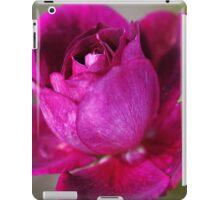 Natures Painting iPad Case/Skin