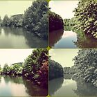 Dreamy Nature by rose-etiennette