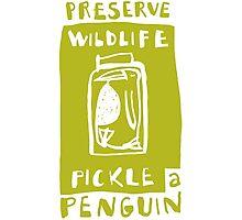 Pickle a Penguin Photographic Print