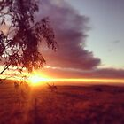 Sunset split, COOMA, NSW by MattLawson