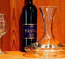 Trump Winery by ctheworld