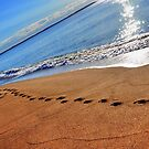 Walk the line by Poete100