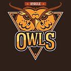 Hyrule Owls by UniqSchweick12