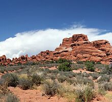 Arches Panorama 1 by marybedy