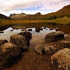 Rocks in Blea Tarn, Lake District, England. by Billlee