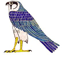 Horus in faience Photographic Print