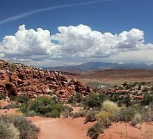 Salt Valley with La Sal Mountains by marybedy