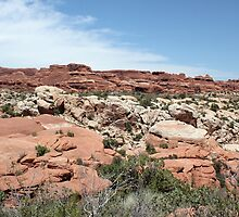 Salt Valley 3 Arches National Park by marybedy