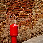 Fire Hydrant, Venice by Tiffany Dryburgh