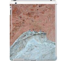 The Wierdest Roost iPad Case/Skin