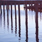 Sunset Pilings by phil decocco