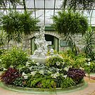 Niagara Falls Greenhouse by Marilyn Cornwell