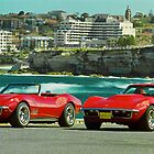 Vette Friends by Andrew Felton