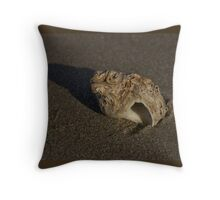 Weathered Whelk on Fahan Beach Throw Pillow