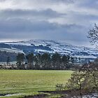 Wensleydale Winter by Trevor Kersley