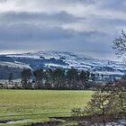 Wensleydale Winter by Trevor Kersley