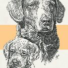 Chesapeake Bay Retriever Father & Son by BarbBarcikKeith