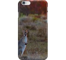 Evening Wallaby  iPhone Case/Skin