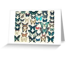 Wings Greeting Card