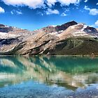 Bow Lake Reflection by Vickie Emms