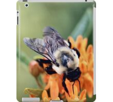Fuzzy Bumble iPad Case/Skin