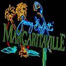 Margaritaville at night by imagetj