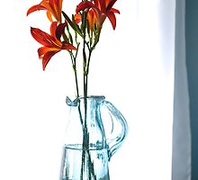 Day Lilies by goddarb