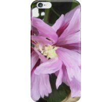 Lilac Flower of China iPhone Case/Skin