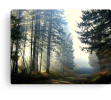 Direct Thy Gaze Within My Soul Canvas Print