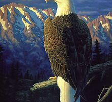 Morning Quest - Bald Eagle Oil Painting by csforest