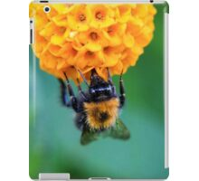 Bee on the orange ball iPad Case/Skin