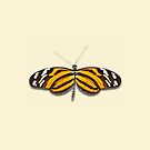 Tiger Longwing by Mark Podger