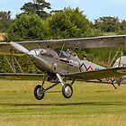 Hawker Demon I K8203 G-BTVE bouncing by Colin Smedley