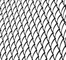 Chain Link on White  © by Ethna Gillespie