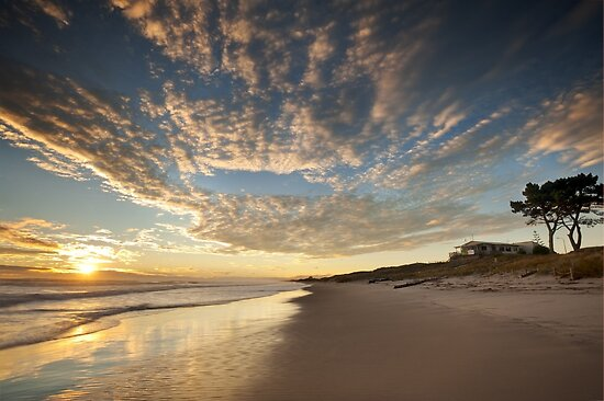 Papamoa Domain Surf Gold by Ken Wright